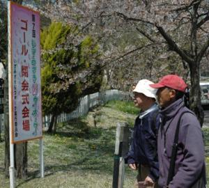 『第7回いずみざき桜ウォーク当日18』の画像