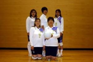 『泉崎村家庭バレーボール協会04』の画像
