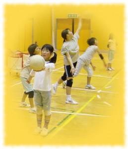 『泉崎バレースポーツ少年団03』の画像