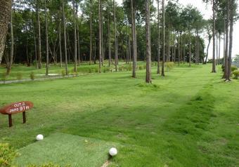 『『パークゴルフ_04』の画像』の画像